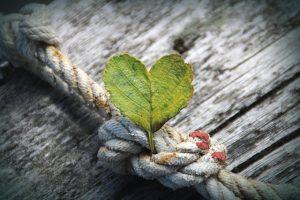Leven vanuit dankbaarheid